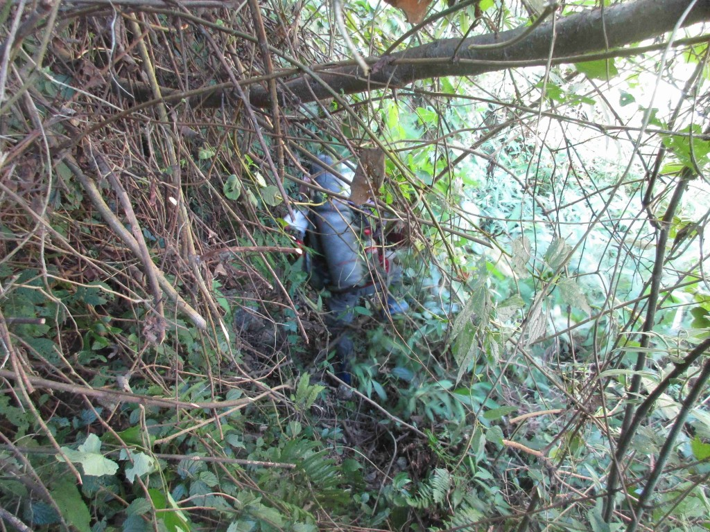 Cut and squeeze through the jungle. This exhausting work continues for days. It gets worse as the bamboo thickets appear