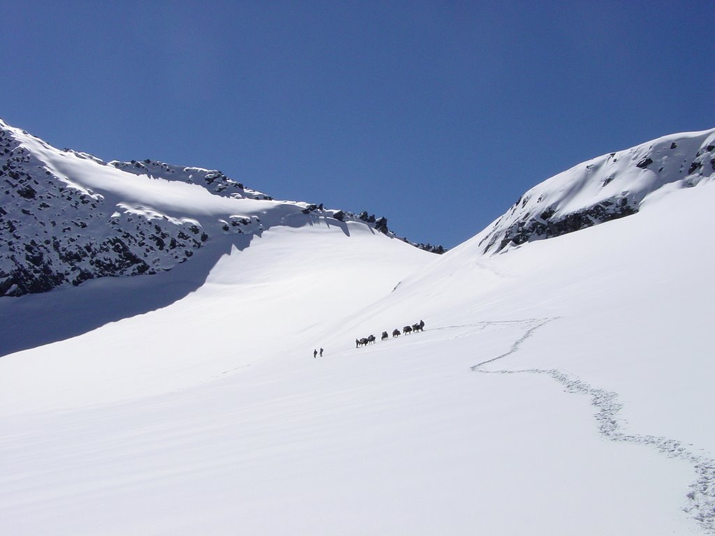 Climbing Thamsar pass from north. Image source : http://www.panoramio.com/photo/8832708