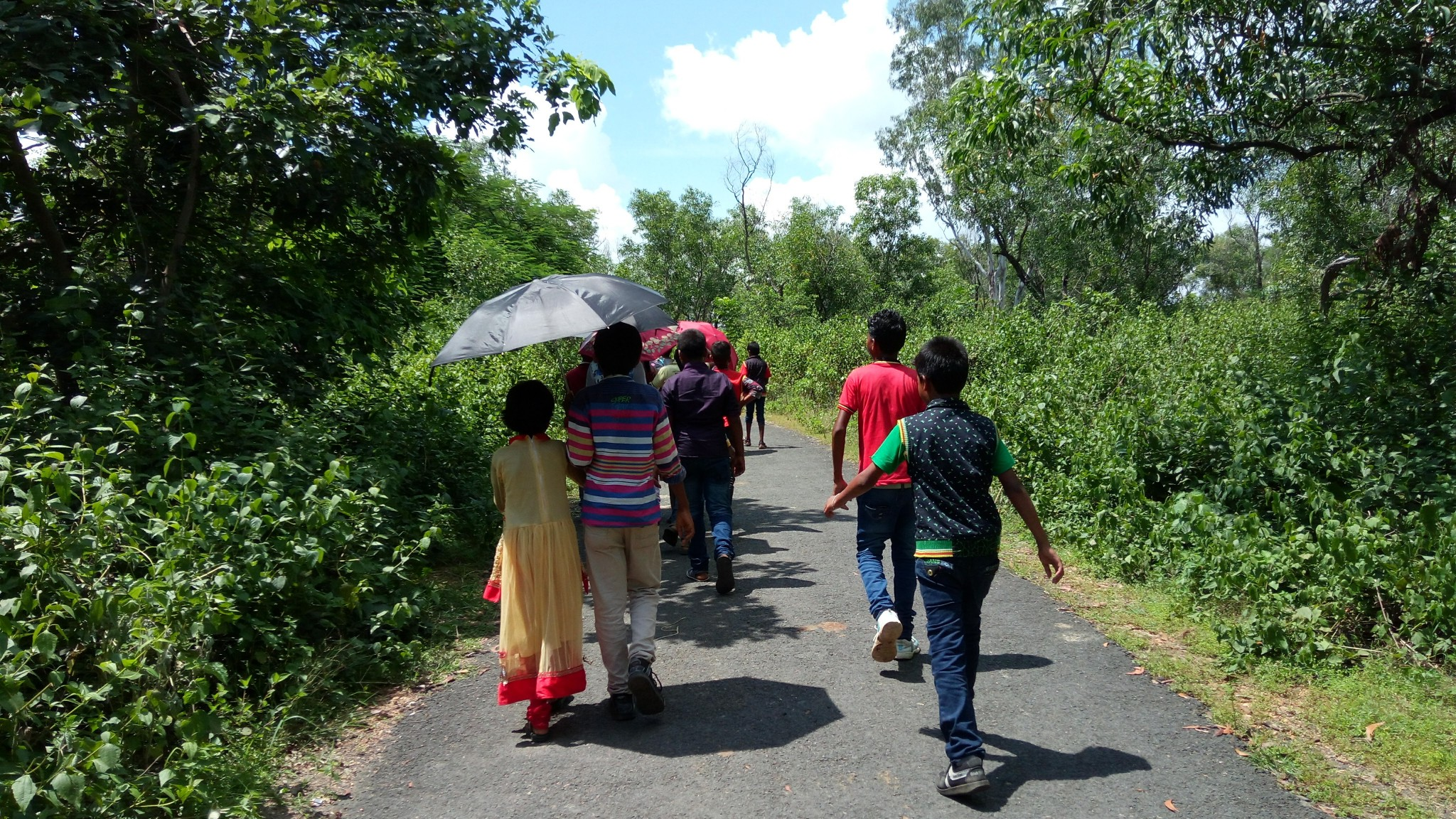 Foot trail within Bangopalpur Reserve Forest