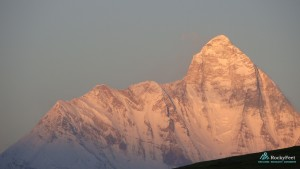 Nanda devi west face from Gorson bugiyal